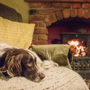 Last Minute Cottages November and December 2020