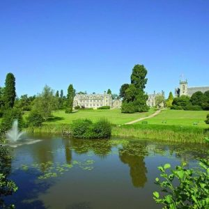 Magnificent lawns at Ashdown Park, Pet Friendly Hotel, South East England