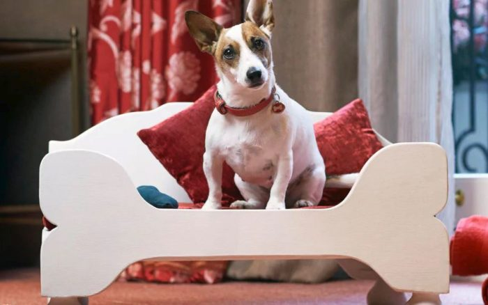 A five star luxury, dog friendly hotel, London - Egerton House Hotel