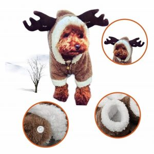 An extremely cute pup wearing a warm, fleece, reindeer styled dog coat