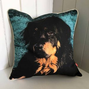 A beautiful custom dog pillow featuring a brown and white dog.
