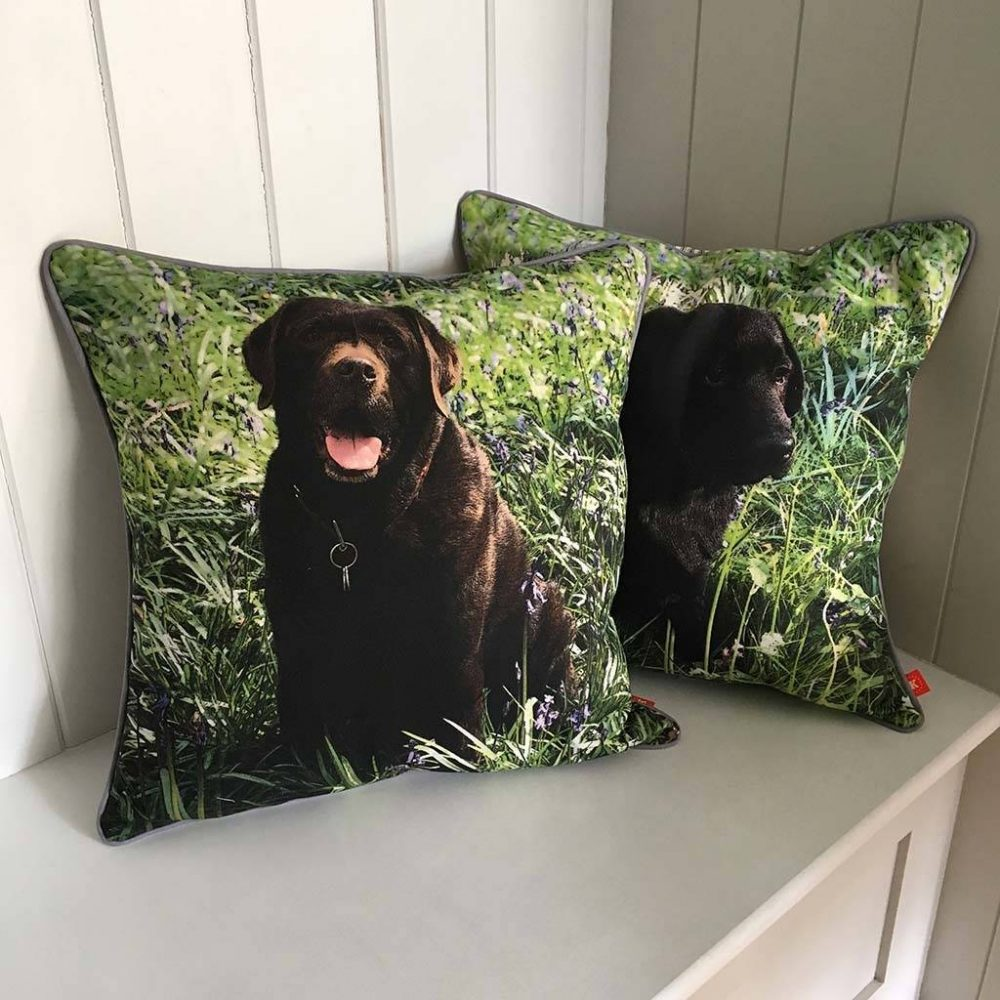 Personalised dog cushions featuring two chocolate brown labradors