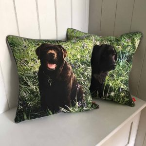 Two personalised dog cushions featuring chocolate brown labradors with a grass background.