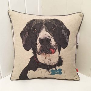 Personalised dog cushion featuring a black and white dog with lovely blue name tag