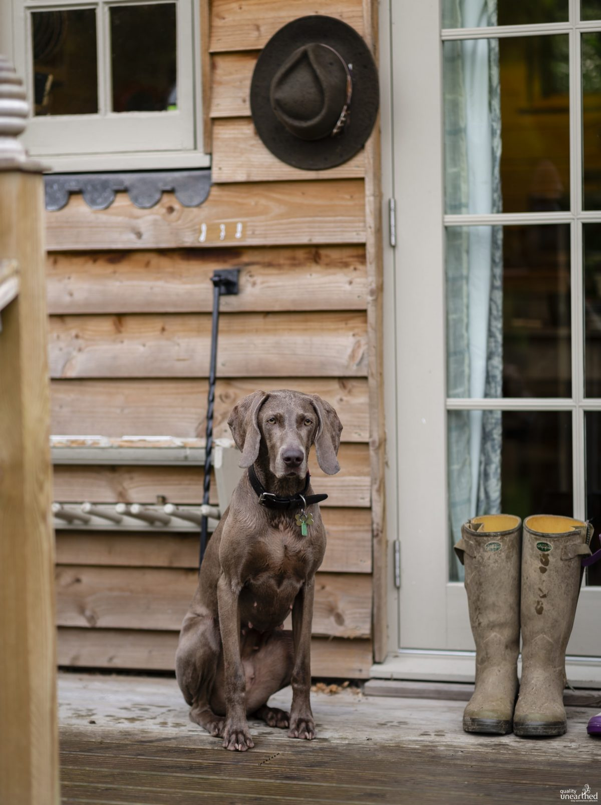 Dog Friendly Glamping East Sussex